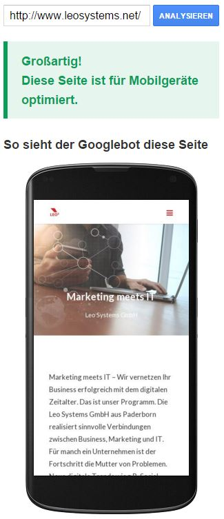 mobile-friendly-test-google-leo-systems