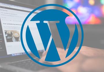 WordPress statische Seite und Titelkonflikt mit Platinum-SEO